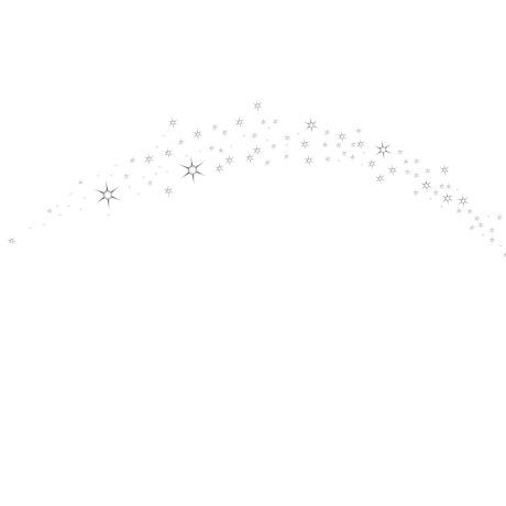 sterrenboog